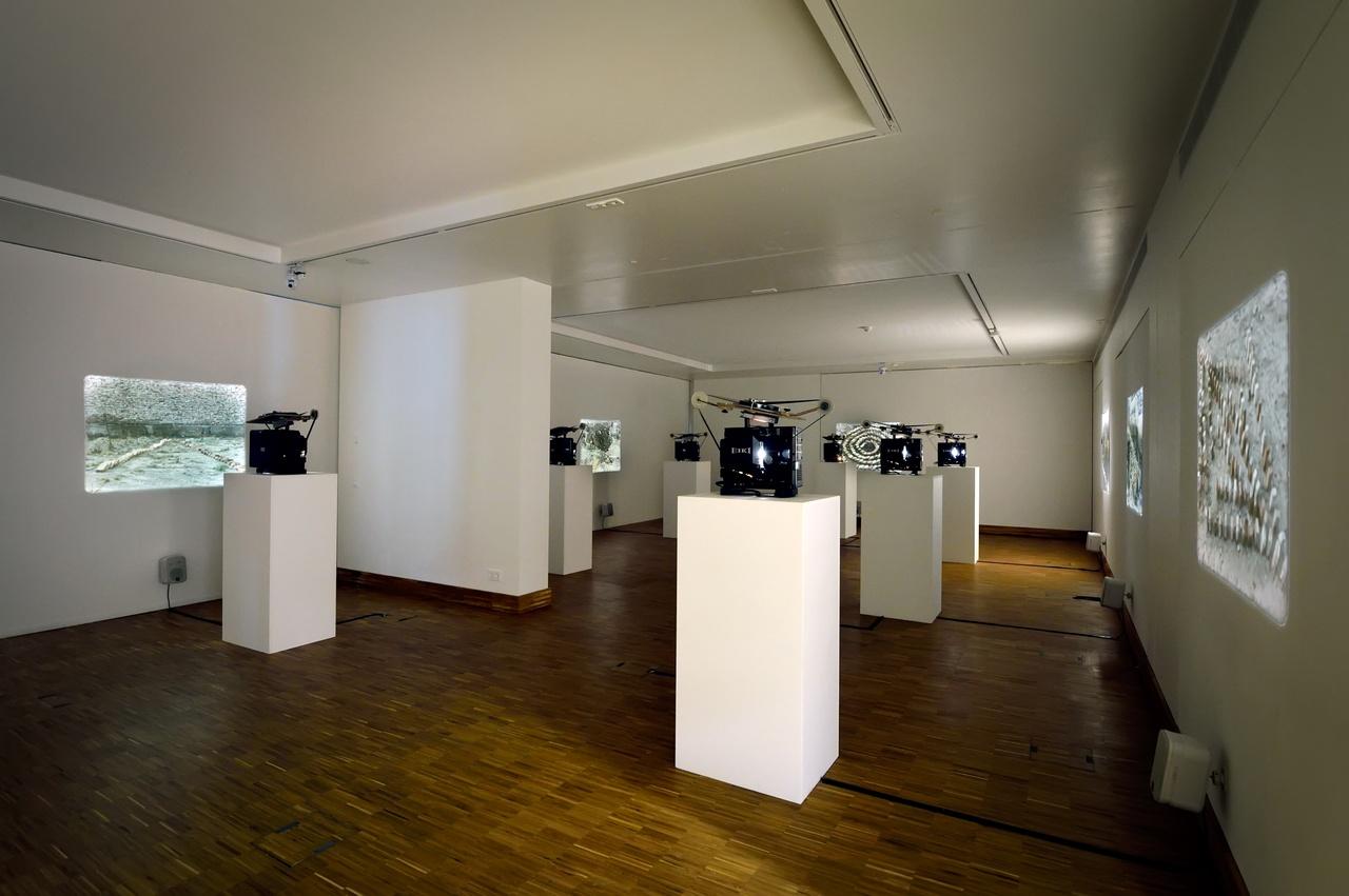 Damian Ortega, Nine Types of Terrain, 2007