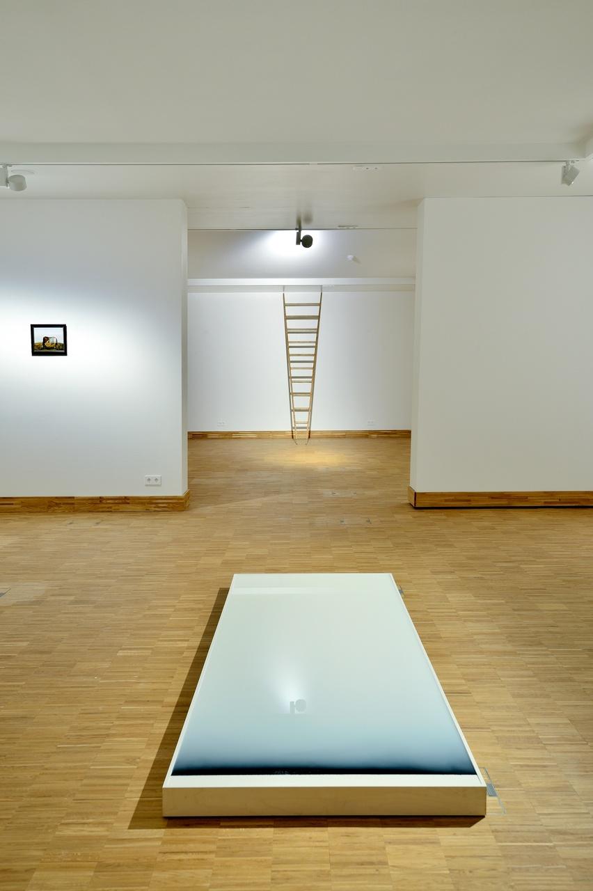 De Vierkantigste Rechthoek' Tom Barman ziet alle hoeken van een eeuw Belgische kunst