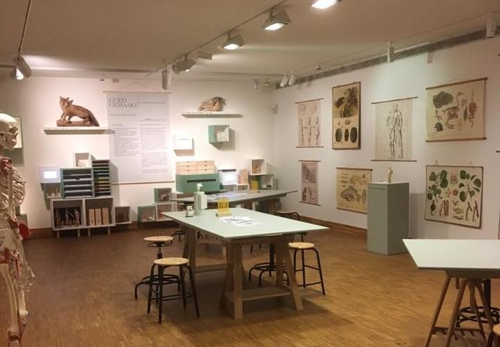 Een tentoonstelling als een tuin om in rond te dwalen