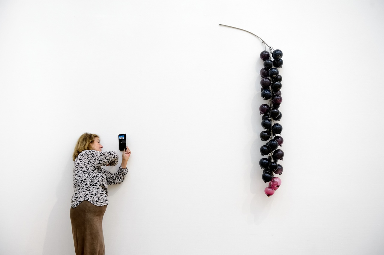 Maria Roosen, Blackberries, 2015