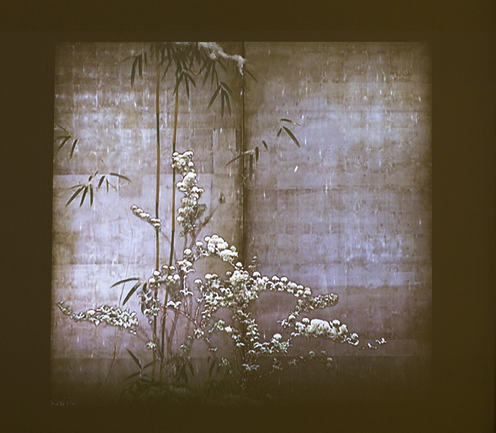 Mami Kosemura, Flowering plants of the four seasons, 2006