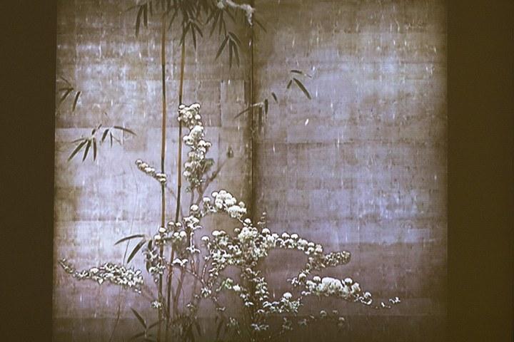 Mami Kosemura, Flowering plants of the four seasons, 2006
