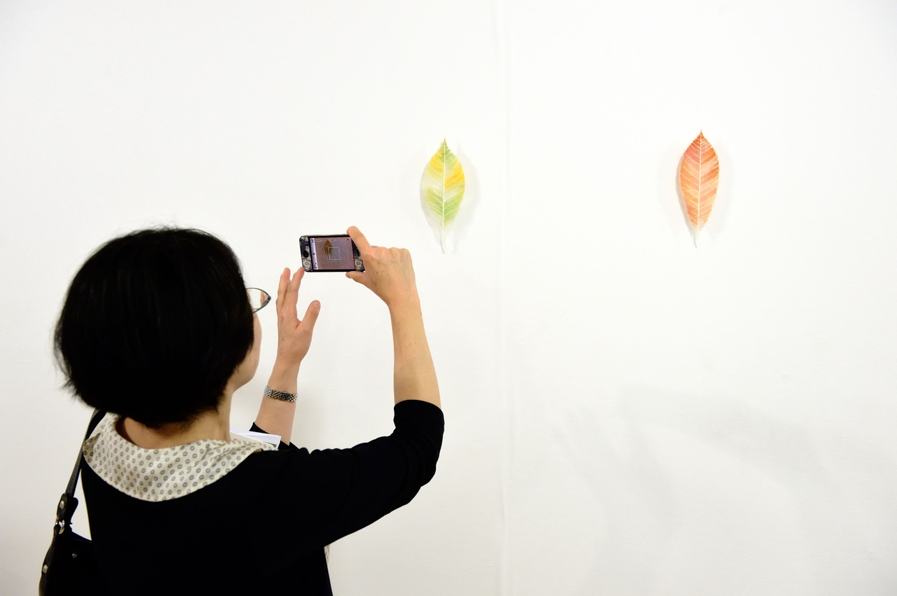 Yumiko Morisue, Leaf, 2013